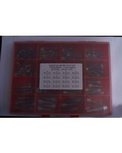 Assorted Metric A2 Stainless Steel Skt Capscrews - 174pcs